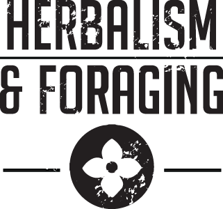 Herbalism and Foraging